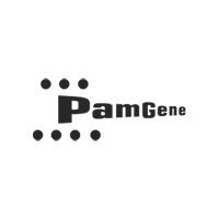 Pamgene ondersteunt het onderzoek in de TOMi longkanker implementatiecel met haar kinase kennis en analyse platform voor biomarkeronderzoek, therapieselectie en patientstratificatie. Dit zijn belangrijke pijlers om therapie op maat naar de praktijk te brengen. PamGene was één van de eerste biomarker bedrijven die de oprichting van TOMi ondersteunde.